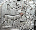 (Family worshipping Mnevis, the cow god of Heliopolis, c. time Israel was in Egypt)