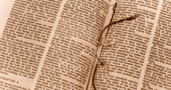 Heartbroken over what is happening in Bible Translation  Part 1: Al Kalima and the WEA