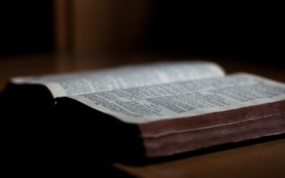 Why Biblical Missiology Signed the Arlington Statement on Bible Translation